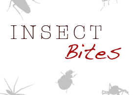 Insect Bites: Identification, Signs, Symptoms and Treatment Guide